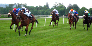 Two_Horse_Race